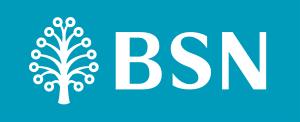 BSN MyRinggit-i EKSEKUTIF-1 Personal Financing Logo